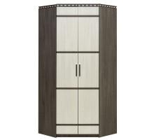 03 Шкаф 2-х дверный угловой Карина (Ясень анкор темный/Ясень анкор светлый)