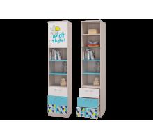 Шкаф для книг с ящиками и дверкой Джимми