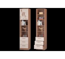 Шкаф для книг с ящиками и дверкой Вояж